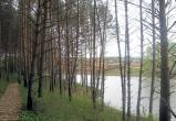 Калужан приглашают к обсуждениям проекта обследования лесного урочища