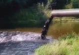 Тонны непонятной жидкости, льющейся из трубы, окрашивают реку в чёрный цвет (видео)