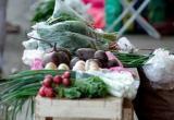 Полицейский отказался от доли в овощном бизнесе во дворе
