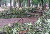 Прошедшая гроза сильно повредила Парк культуры и отдыха