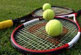 Калужан зовут обсудить судьбу теннисных кортов в Золотой аллее