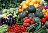 В Калуге пройдет выставка даров сада, огорода и личного подворья