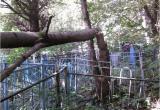 На кладбище несколько месяцев не убирают рухнувшие деревья