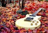 Программа мероприятий калужского Дома Музыки в ноябре