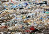 Несанкционированная свалка нанесла калужской почве вред на 50 млн рублей