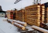 Директору лесопилки грозит 7 лет тюрьмы