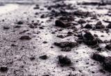 """Калужское предприятие наказано за """"убийство"""" почвы"""