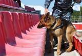 "Перед матчем ""Калуга"" - ""Торпедо"" стадион проверят собаки"