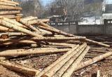 Директору лесопилки грозит штраф до 4 млн рублей за иностранных работников