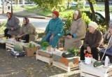 Покупаете ли вы продукты у бабушек?
