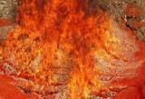 Россельхознадзор уничтожил больше 450 кг красной икры