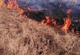 Огонь подобрался к автозаправке из-за пала травы