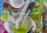 В России хотят запретить продажу пластиковой одноразовой посуды