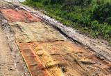Калужане расстелили ковры по бездорожью