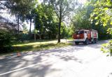 Автобус сбил 6-летнего ребенка