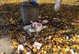 Городской Голова распорядился поменять график уборки скверов и парков