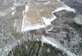 Осужден лесничий, по вине которого уничтожена часть национального парка