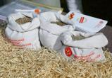 В День калужского поля продемонстрировали передовые технологии в растениеводстве