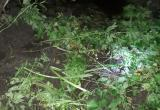 В болоте обнаружен труп похищенного человека