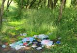 Прокуратура требует убрать мусор из городских скверов и парков