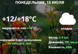 Прогноз погоды в Калуге на 15 июля