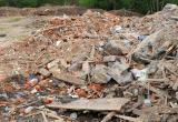 Полиция задержала подозреваемого в незаконном сбросе мусора
