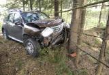 Автомобилистка съехала с дороги и протаранила дерево