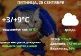 Прогноз погоды в Калуге на 20 сентября