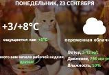 Прогноз погоды в Калуге на 23 сентября