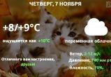 Прогноз погоды в Калуге на 7 ноября