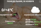 Прогноз погоды в Калуге на 18 ноября