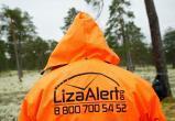 """""""Лиза Алерт"""" приглашает на лекции для новичков"""