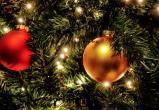 Калужан приглашают на открытие новогодних ёлок