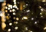 Что говорят калужане о новогодних праздниках в Калуге?