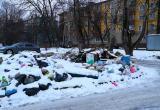На улице Жукова обнаружили стихийную свалку