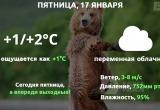 Прогноз погоды в Калуге на 17 января